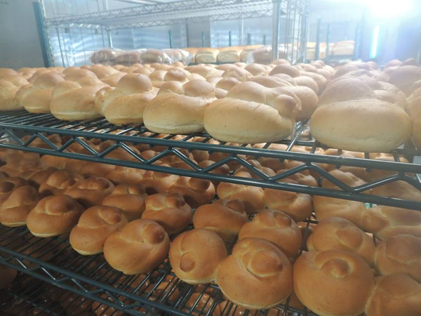 Organic Beautiful Hamburger Buns - 8 pk