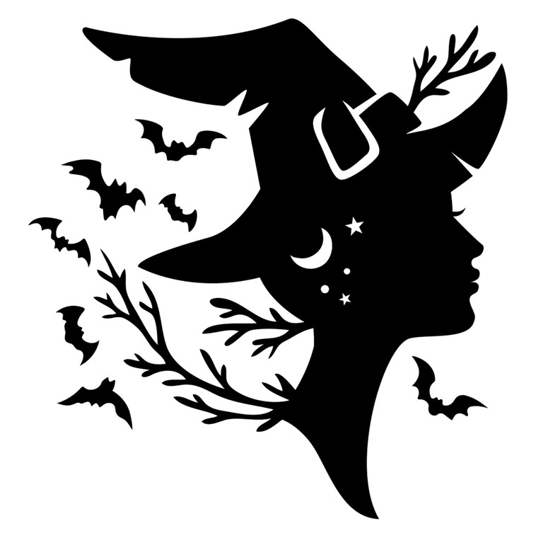 Night Witch Decal