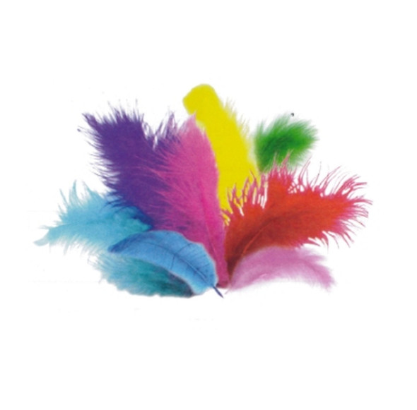 Fun Burst Feathers Color Pack (Approx. 150)