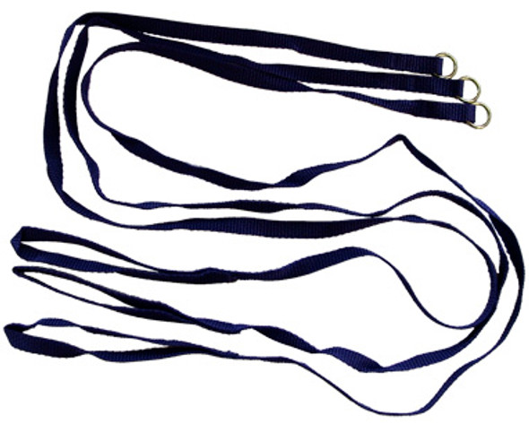 Behave 25 pack 6' Kennel Leads