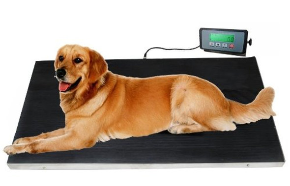Scenthound Heavy Duty 660 Pounds Veterinary Dog Scale with Stainless Steel Platform and Rubber Mat for Dog