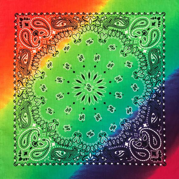 Bandanna Rainbow Paisley