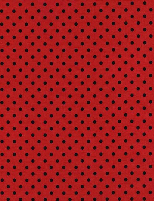 Dotty in Ladybug