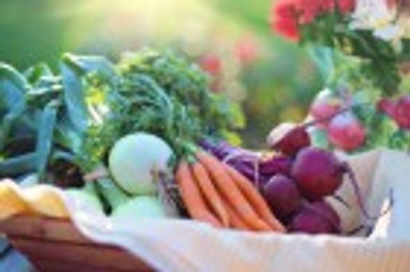 Paradise Herbs, ORAC-Energy Greens, 15 Packets, 6 g Each