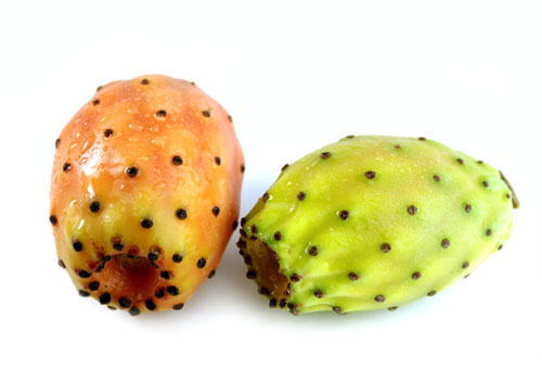 Two prickly pear cactus fruits