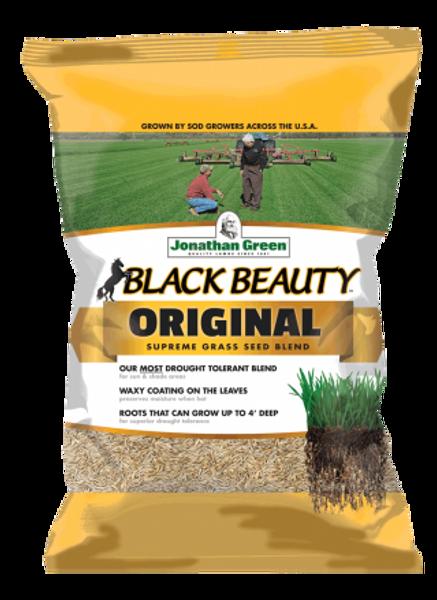 black beauty seed
