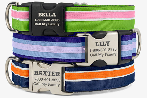 Original Stripe Dog Collar