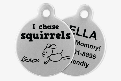 I Chase Squirrels - Stick Dog Pet Tag