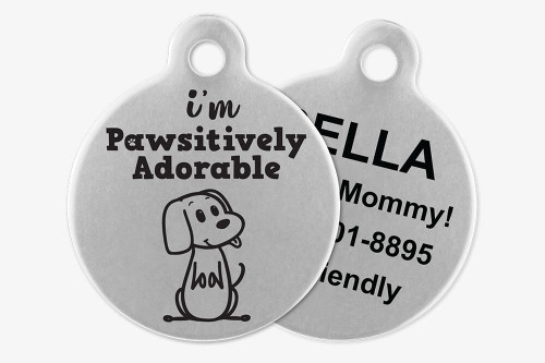 I'm Pawsitively Adorable - Stick Dog Pet Tag
