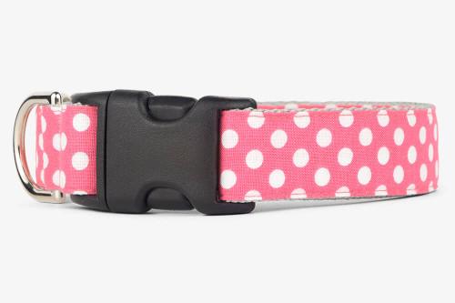 Blossom Dots Dog Collar