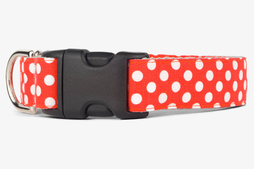 Clementine Dots Dog Collar