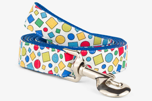 Geometric Colors Dog Leash