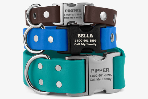 Waterproof Dog Collar with Quick Release Buckle