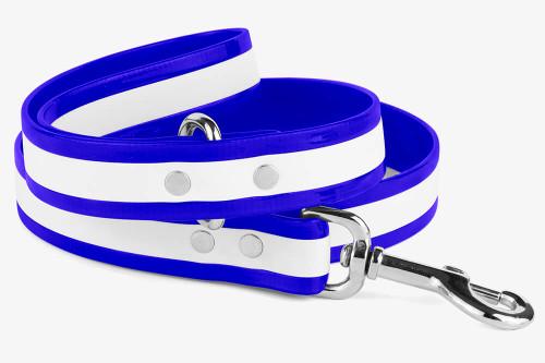 Waterproof Glow in the Dark Dog Collar with Quick Release Buckle
