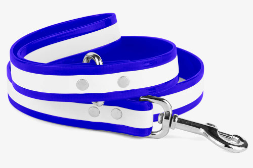 Glow In Dark Waterproof Dog Leash