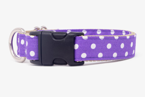 Purple Mini Dots Dog Collar