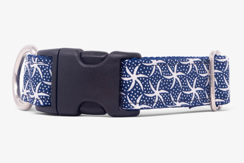 Sea Star Dog Collar