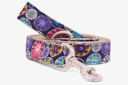 Sea Cookie Dog Leash