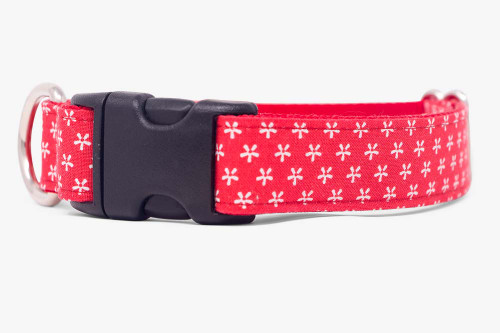 Simple Daisy Dog Collar