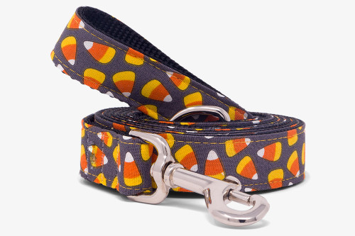 Spooky Candy Corn Dog Leash
