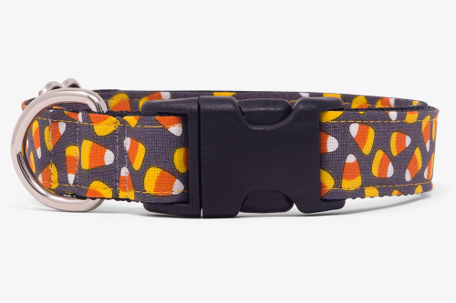 Spooky Candy Corn Dog Collar
