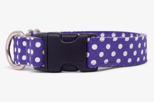 Purple Tiny Polka Dots Dog Collar