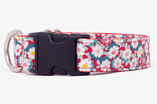 Retro Floral Dog Collar