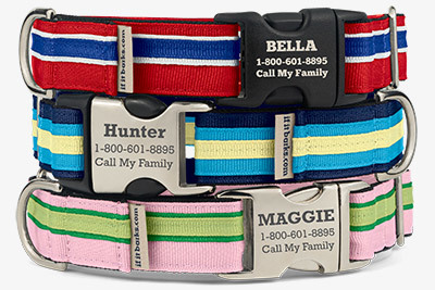 Striped Martingale