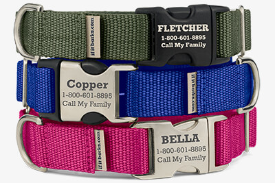 Webbing Martingale Collars