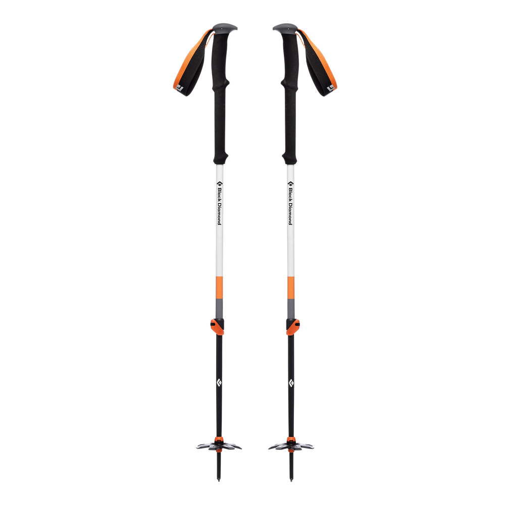 Expedition 2 Ski Poles