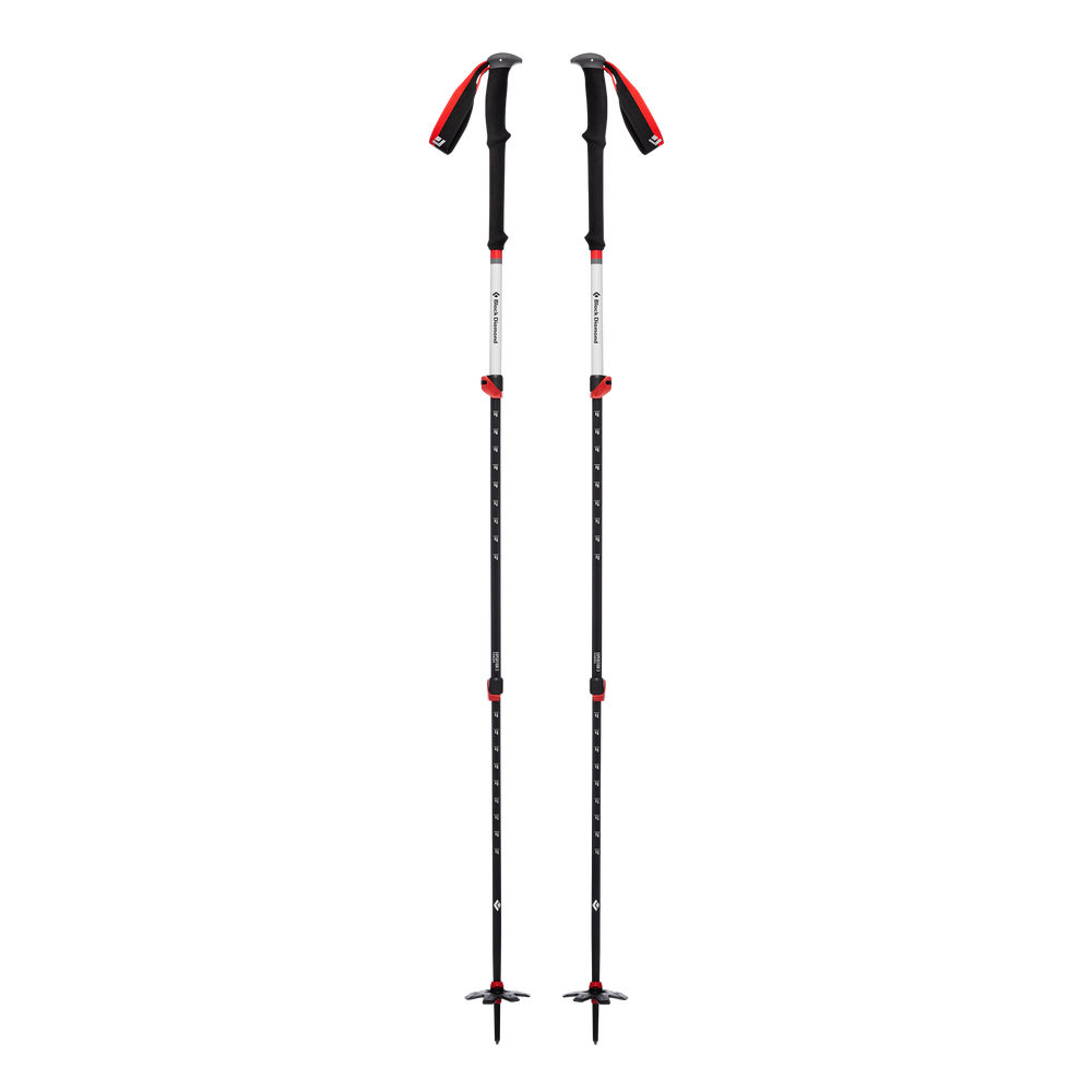 Expedition 3 Ski Poles