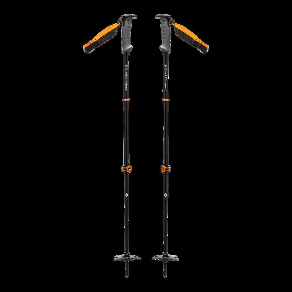 Traverse WR 2 Ski Poles - Past Season