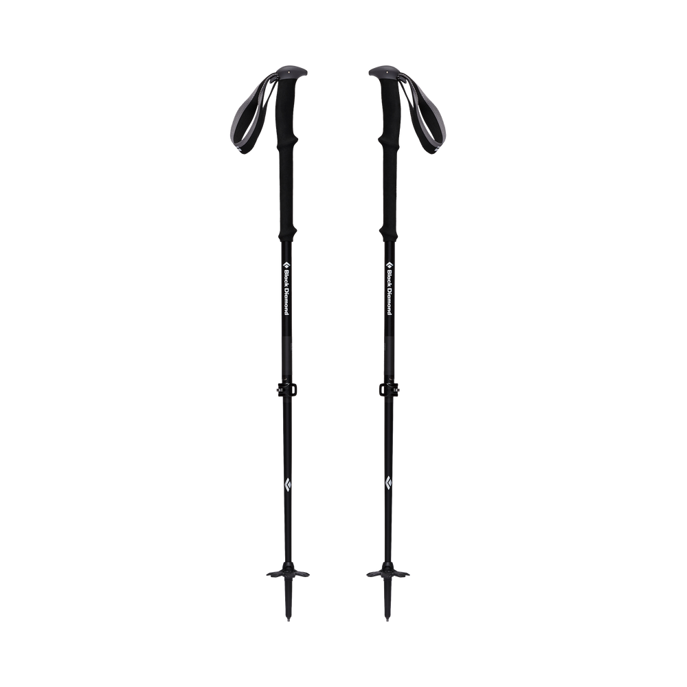 Vapor Carbon 2 Ski Poles