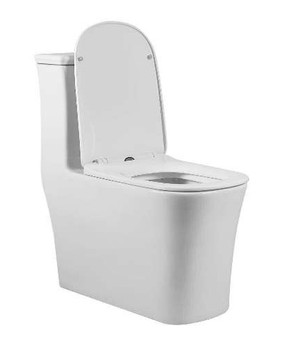 SFC ONE PIECE DUAL FLUSH TOILET W/ SOFT CLOSING SEAT TOILET