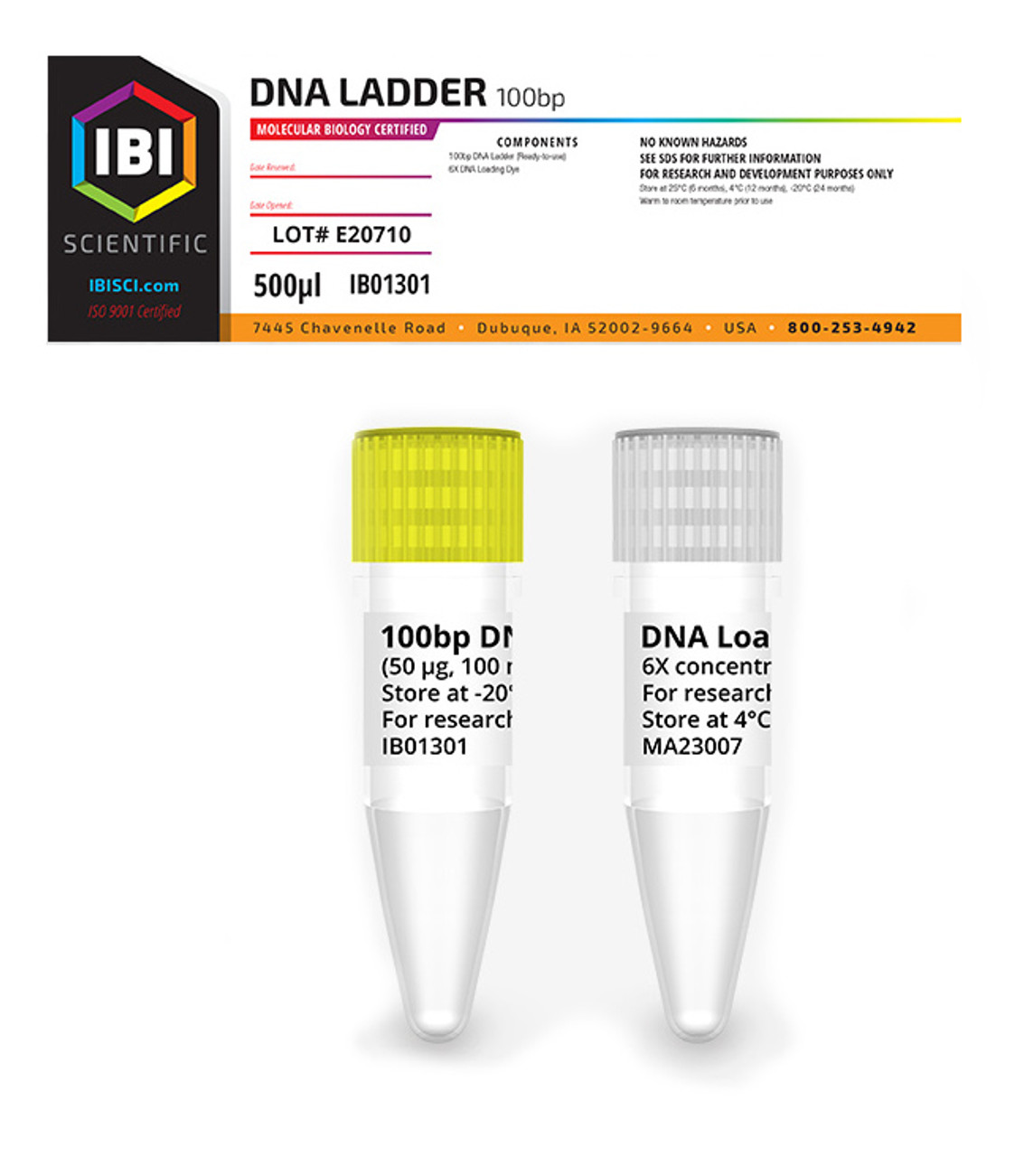 IBI - 100BP DNA LADDER