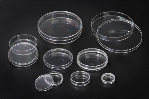 SPL Cell Culture Dish, 35x10 mm, PS,TC treated, sterile to SAL 10-6, external grip, Case of 500
