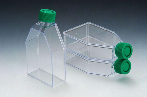 SPL Cell Culture Treated Flask with Plugged Cap