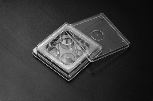 SPL IVF Multi well Culture Plate, PS,4 wells, 66x66mm,TC Treated, Sterile to SAL 10-6, 4 x sleeve Case of 120