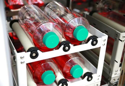 SPL Roller Bottle 850 cm² Sterile, Tissue Culture Treated,