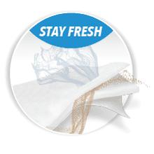 stayfresh.png