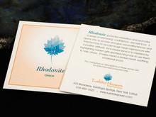 Rhodonite Description Card