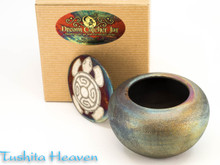 Southwest Turtle Dream Jar