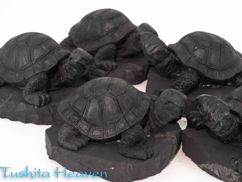 Shungite Turtle