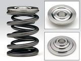 Skunk2 Pro Series Honda/Acura B16A/B17/B18C/H22A/F20B Titanium Retainers