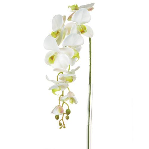 Orchid Phalaenopsis Artificial Silk Trailing 98cm White