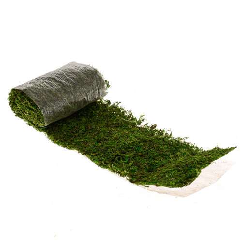 Asia Moss Sheet Preserved Green