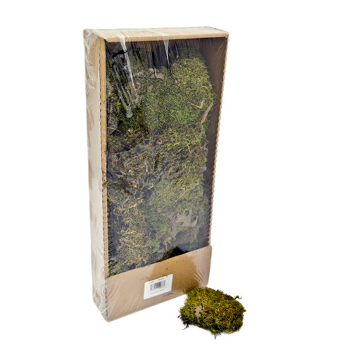 Dried Indian Moss 300g Box For Craft and Floristry