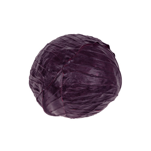 Artificial Vegetable Cabbage Head 18cm Diameter Purple
