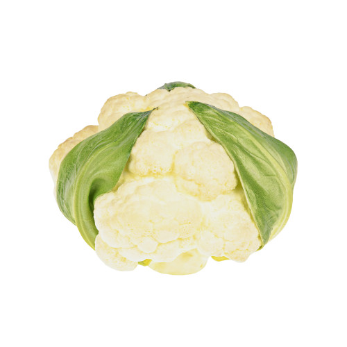 Artificial Vegetable Cauliflower Head 14cm Diameter