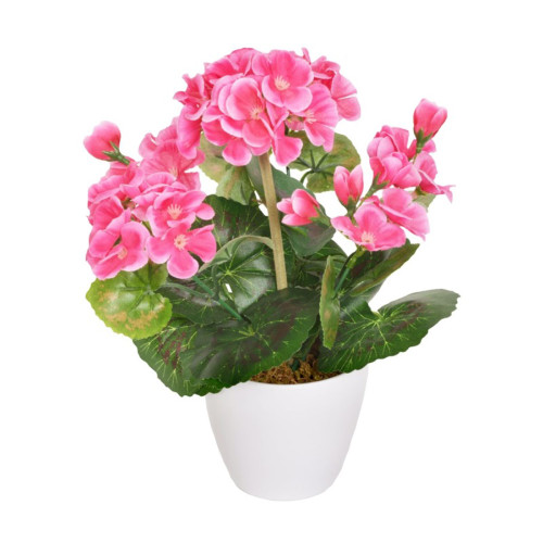 Artificial Mini Geranium in White Pot Dark Pink